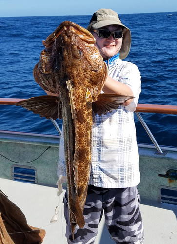 Outrider sportfishing san pedro ca for 22nd landing fish count